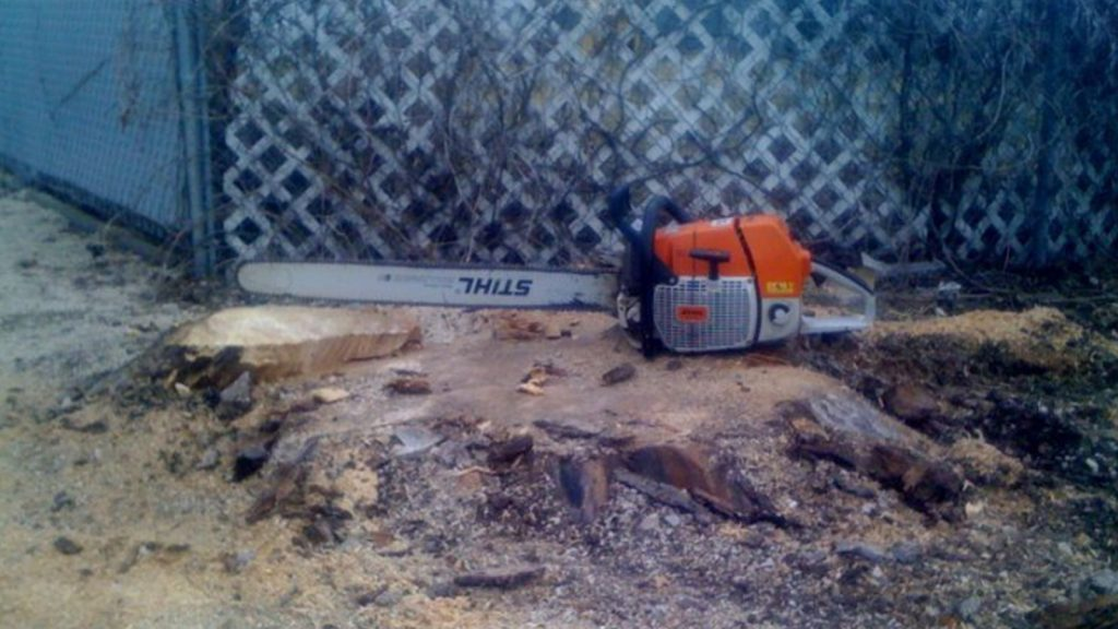 ASAP Tree & Stump CHAINSAW STUMP REMOVAL