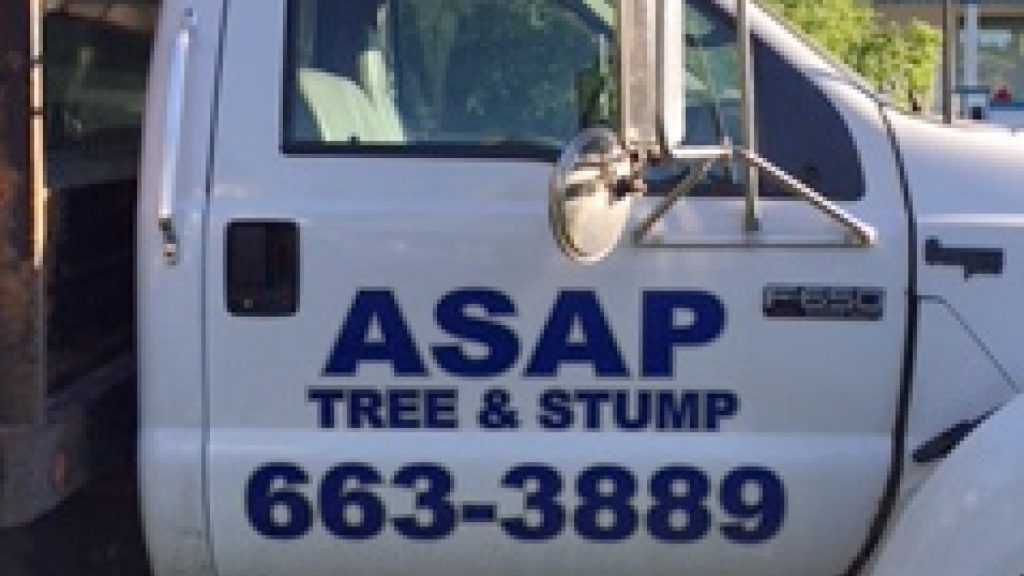 ASAP Tree & Stump TRUCK